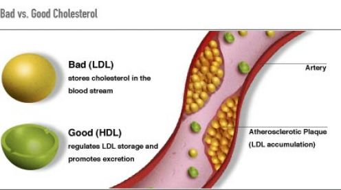 Foods To Reduce Ldl Cholesterol Naturally